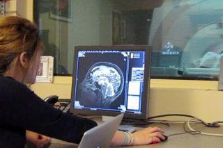 human perception, functional magnetic resonance imaging, fMRI, valence