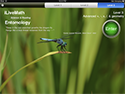 Insects + math = learning app