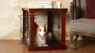 separation anxiety dog crate