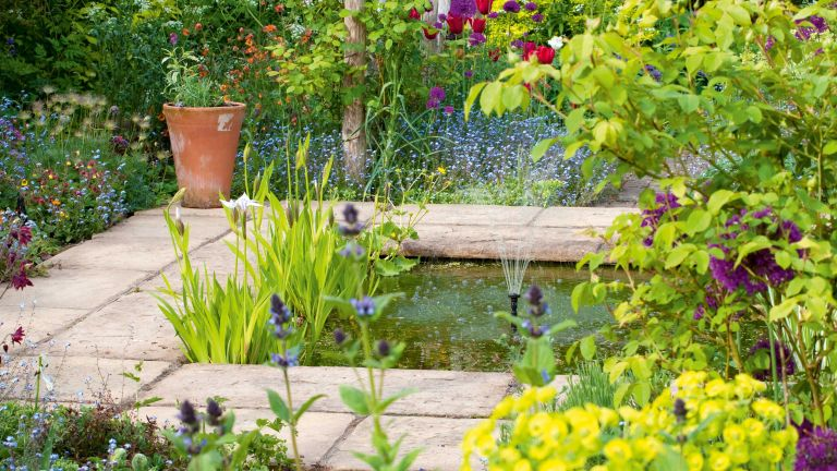 how to clean a pond: pond with plants and fountain