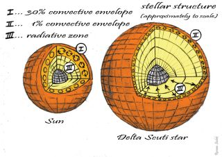 Comparing the interior of a Delta Scuti star to the sun. Notice how deep the convection layers run on solar-type stars, compared to the Delta Scuti. Although it makes up only one percent of the radius, astronomers think convection could help drive the pul