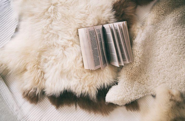 books help fall asleep