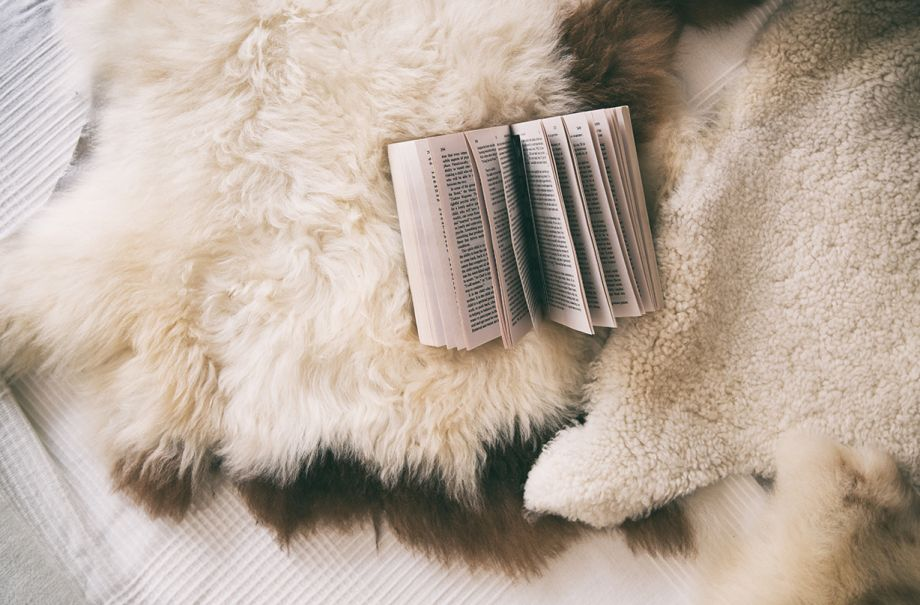 These are the books you should read to make you fall asleep