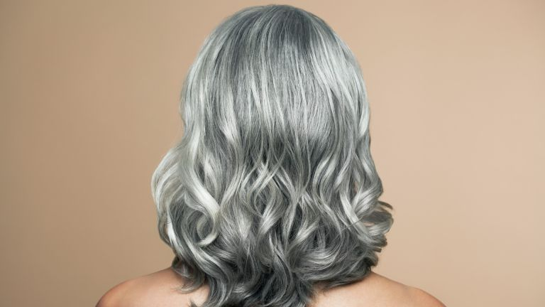 Transitioning to grey hair back view of woman with silver hair