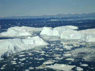 Jakobshavn ice bergs