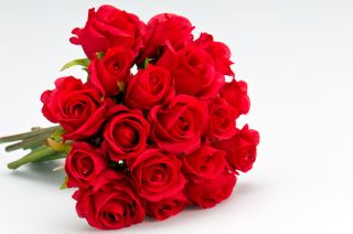 roses, Valentine's Day, gifts
