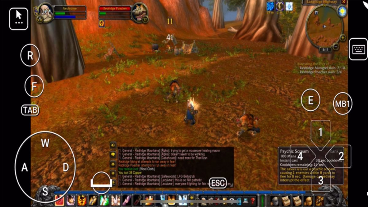 Someone is levelling their WoW Classic priest entirely