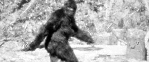 Bigfoot Legend Turning Into Horror Franchise For Blair