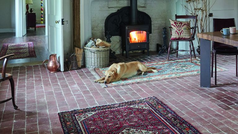 Floor insulation. Dog lying on original floor in front of fire