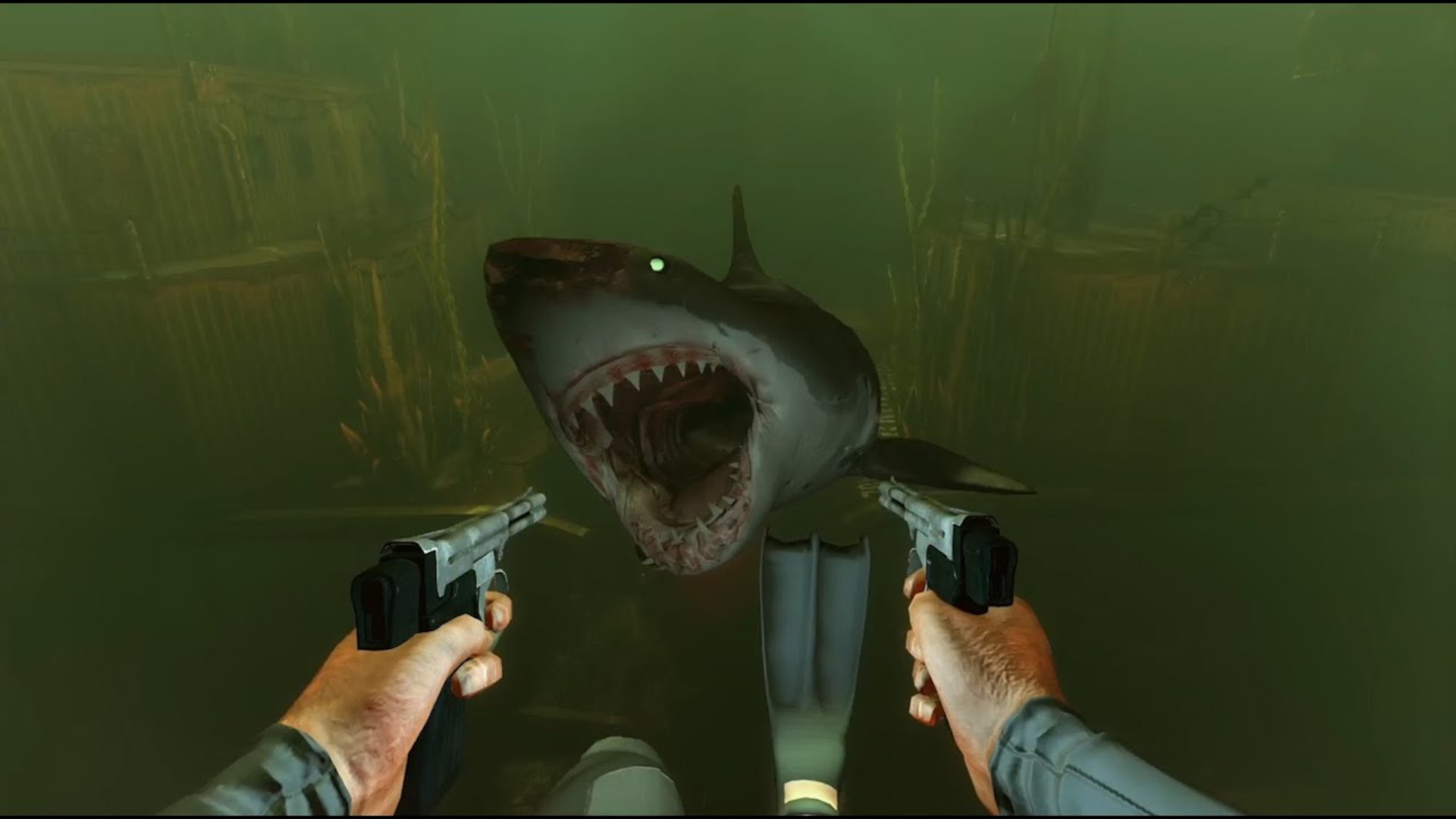 A shark swimming towards you in Depth, ready to strike