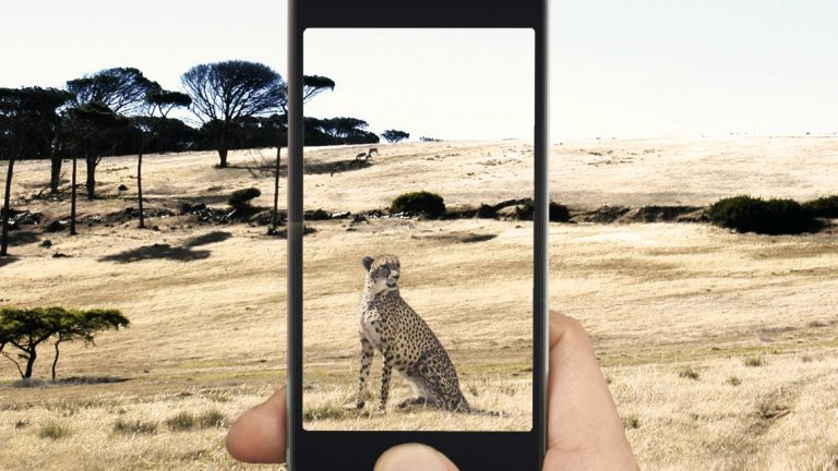 Samsung Galaxy S10 SoC codename cheetah