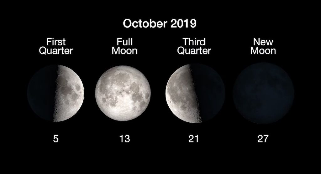 Full Moon Calendar 2019 When To See The Next Full Moon Space