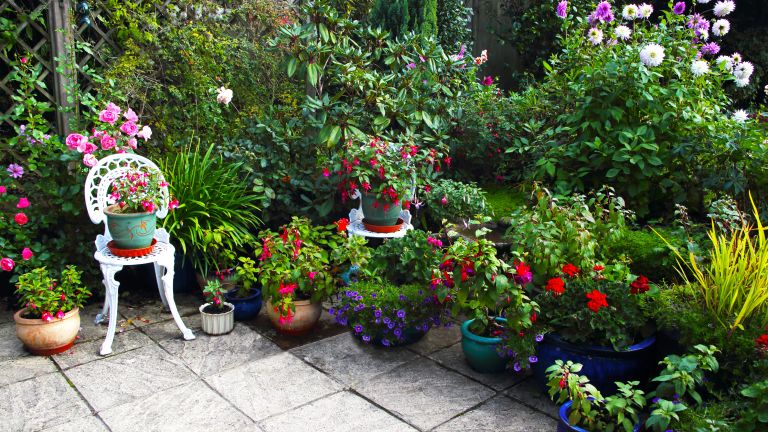 And English container garden with many pots