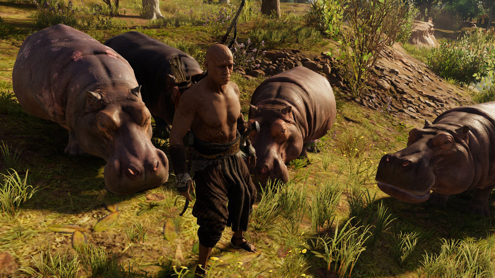 Building a hippo army in Assassin's Creed Origins | PC Gamer