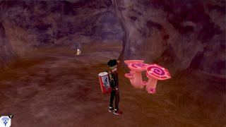 Isle of Armor Max Mushrooms