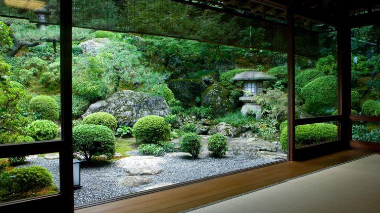 urban Zen garden