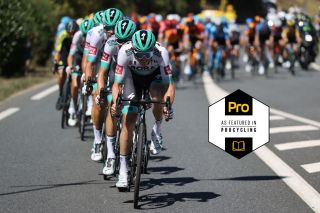 Bora-Hansgrohe split the race on stage 7 of the 2020 Tour de France