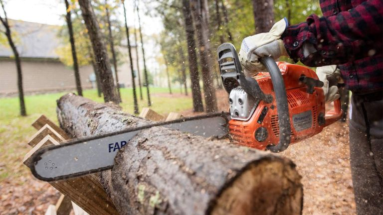 A chainsaw being used by a man in a forest to cut a tree trunk