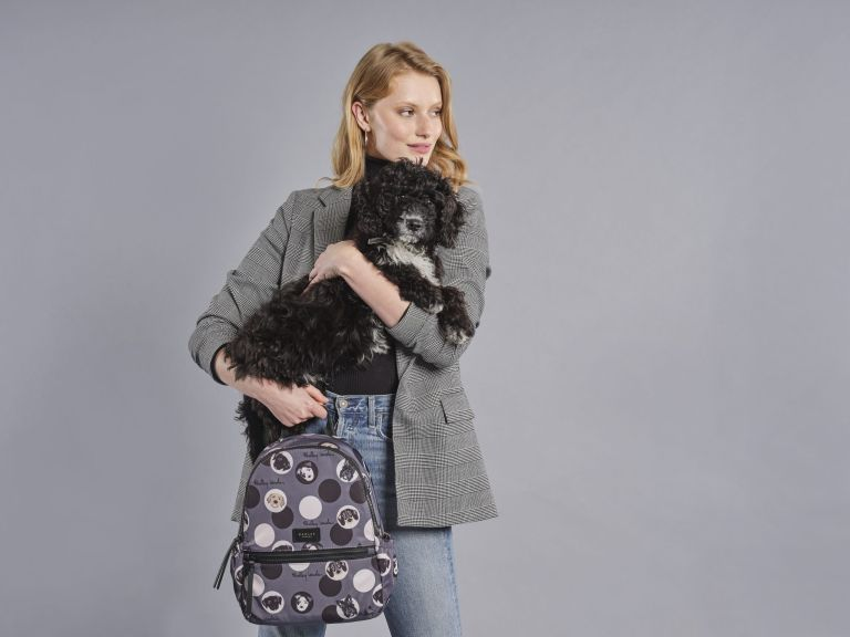 Radley's Dogs Trust charity collection