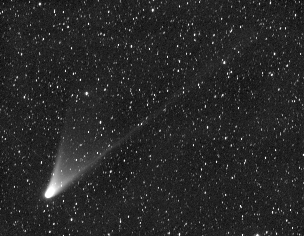 6 Surprising Facts About Comet Pan Starrs In Night Sky Space