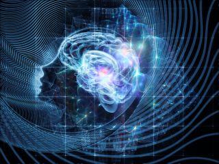 lsd, brain, psychadelic
