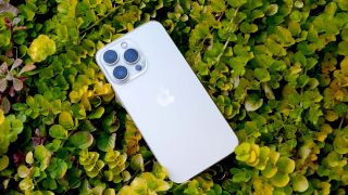 iPhone 13 Pro laying on a bed of plants
