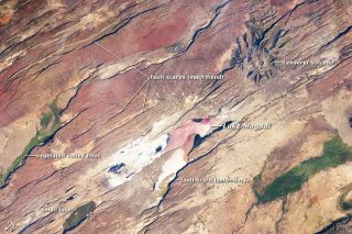 An astronaut aboard the International Space Station snapped this photo of the East African Rift, the spot where Earth's crust is ripping apart and where a trove of early human ancestor fossils have beenf found.