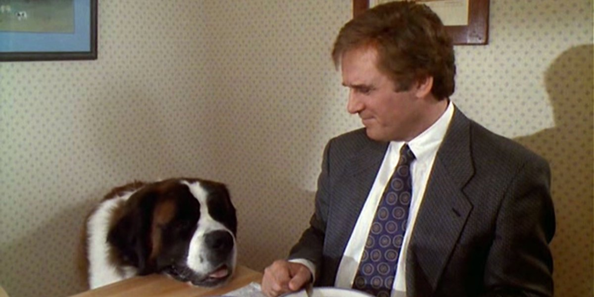 Charles Grodin and the star St. Bernard from Beethoven