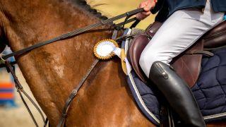 Nahaufnahme eines Pferdes und seines Reiters, die an einem Reitturnier teilnehmen