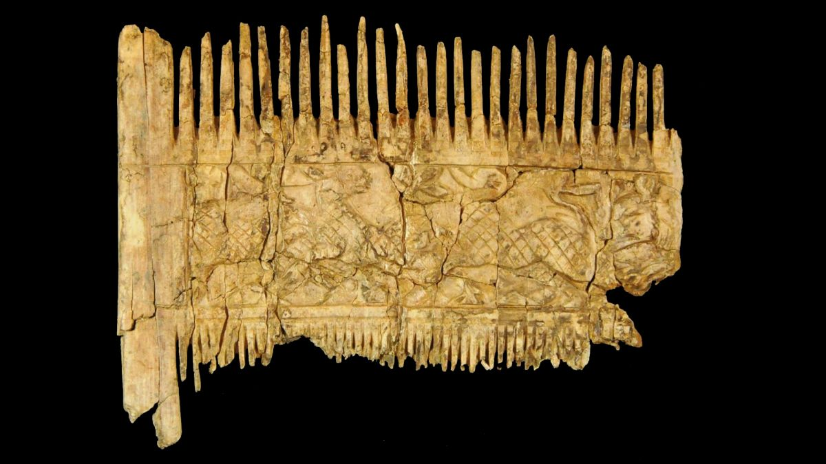 Rich medieval hipster was buried with his fancy beard comb