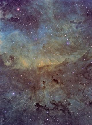 Nebulae in Cygnus
