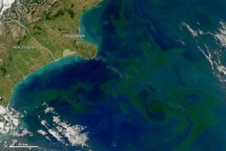 phytoplankton-bloom-new-zealand-110301-02