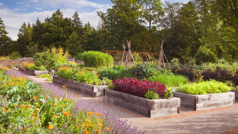 raised garden bed ideas made from sleepers in vegetable garden