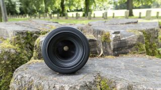 Front-on view of the Nikon Nikkor Z MC 105mm f/2.8 VR S sitting on a tree trunk