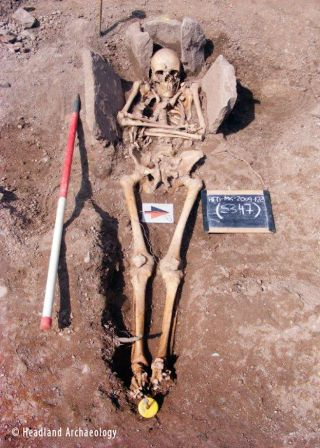 Skeleton of knight