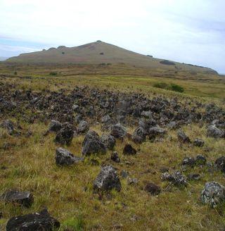 Rapa Nui Rock Garden