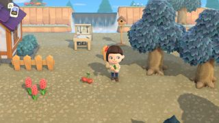 Animal Crossing: New Horizons fencing