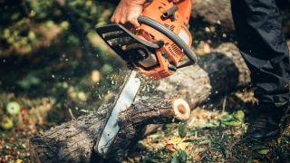 Best chainsaws 2021: STIHL and Makita chainsaws