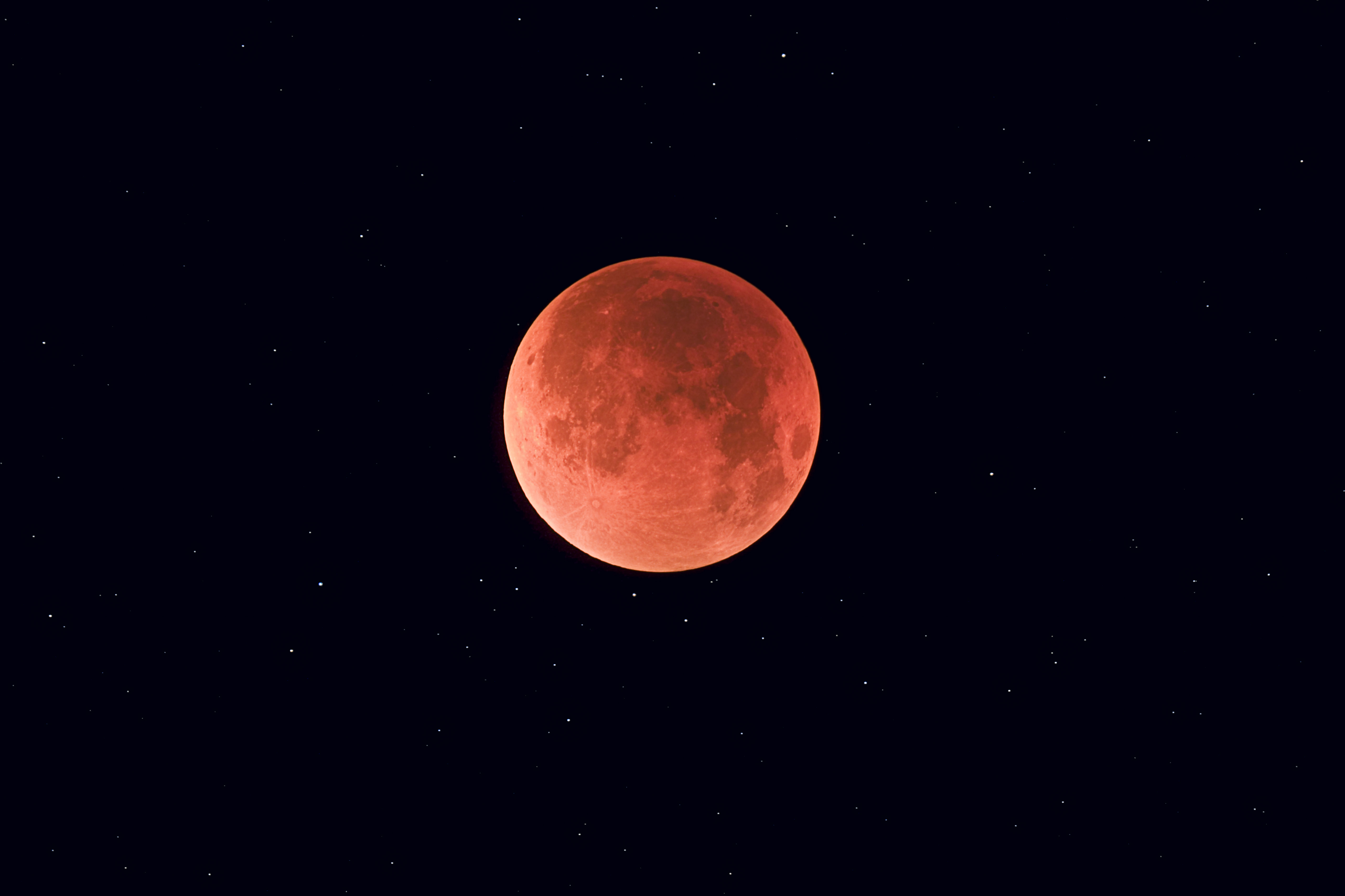 blood moon january 2019 calgary - photo #12