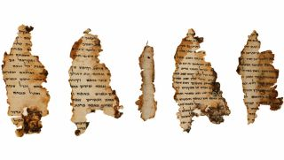 digitized image of the Dead Sea Scroll called the Temple Scroll