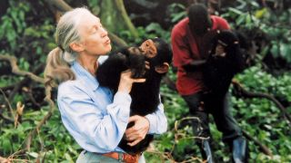 Jane Goodall with a chimpanzee