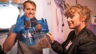 Officers Sean Gellenbeck and Dr. Brandy Nunez perform the Mission to Mars hair fertilizer experiment with hair donated by present and past crewmembers at HI-SEAS.