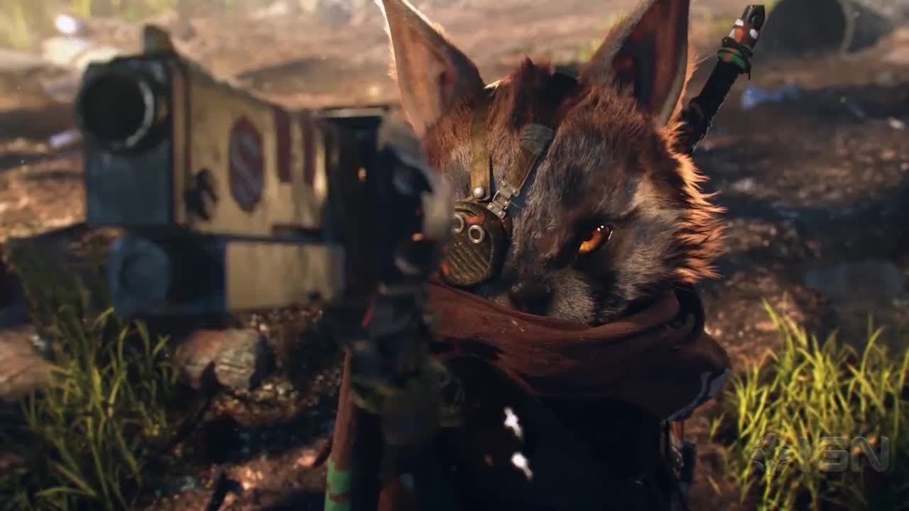 BioMutant developers went silent for so long so they could fix bugs without crunching