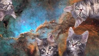 Andy Freeberg posted a video about a fictional character whose job it is to digitally removes cats from space photos.