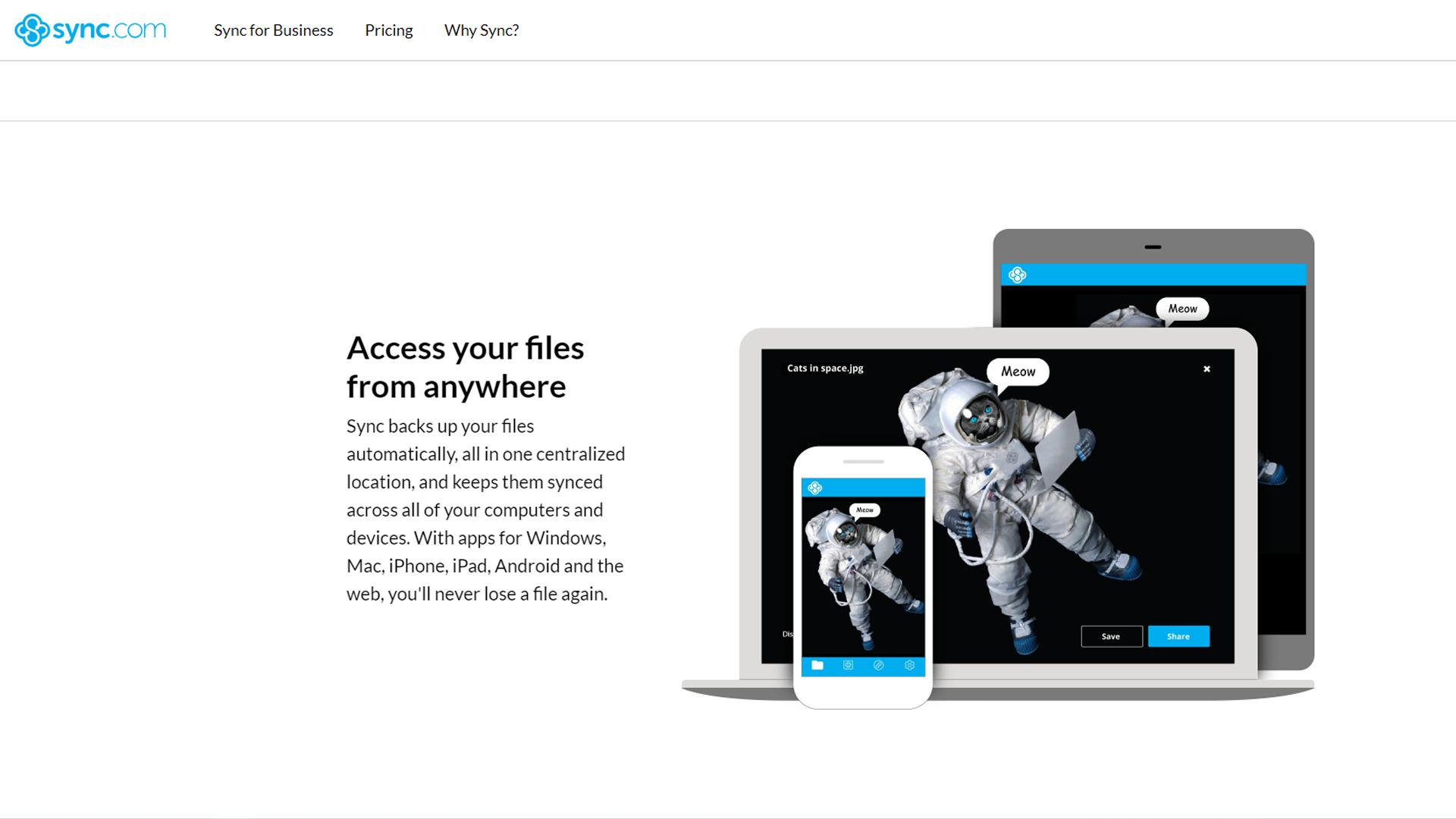 Sync.com's homepage