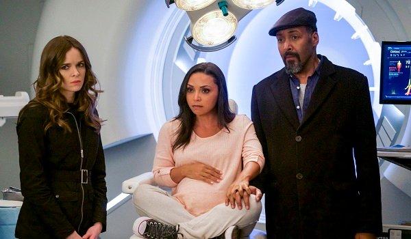 Caitlin Cecile Joe Danielle Panabaker Danielle Nicolet Jesse L. Martin The Flash The CW