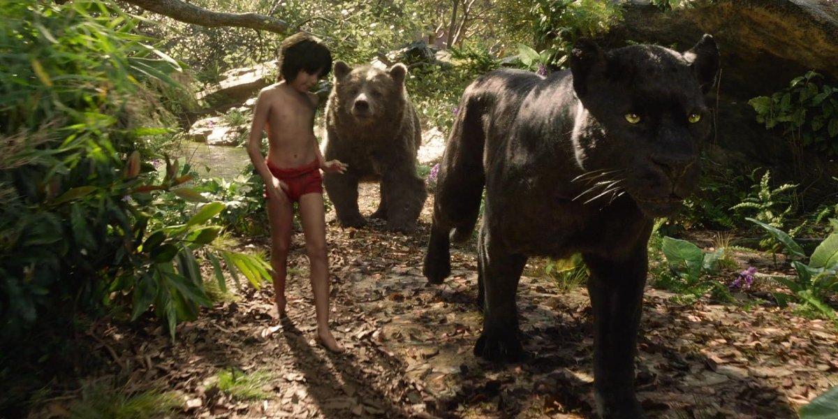 Mowgli (Neel Sethi), Bagheera (Ben Kingsley), and Baloo (Bill Murray) in The Jungle Book