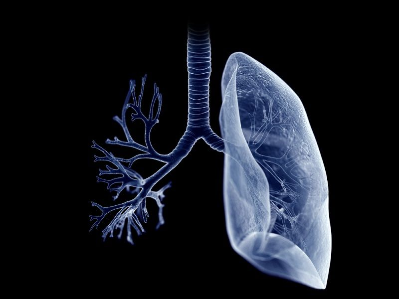 Fat Can Build Up in Your Lungs