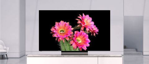 Vizio OLED TV (OLED55-H1) review