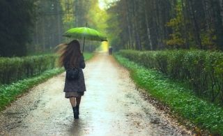Why Rain Gives Off That Fresh, Earthy Smell | Live Science